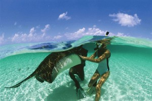 scuba-stingray-turks-caicos-300x200